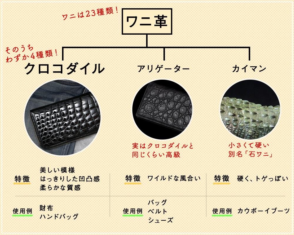 ワニ革は「クロコダイル」「アリゲーター」「カイマン」に分けられます